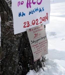 Звёздный_2014_плакат